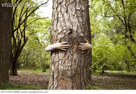 A hugged tree is not so likely to complain about sexual harassment.